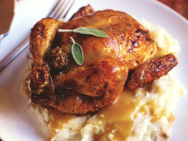 Cornish Game Hen with mashed potatoes